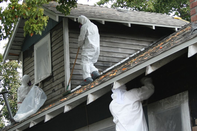 Clean Air Asbestos Solutions